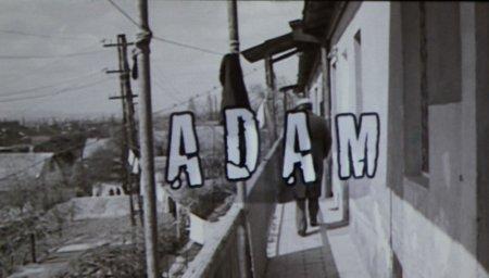"""""""Adam"""""""