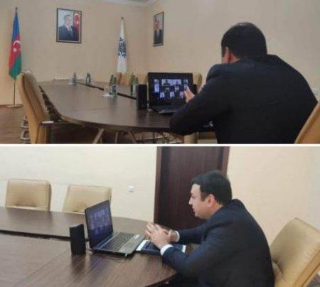 YAP Masallı Rayon Təşkilatı Gənclər Birliyinin onlayn konfransı keçirilib