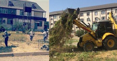 Masallı Rayon Mənzil İstismar Sahəsi təmizlik işlərini davam etdirir